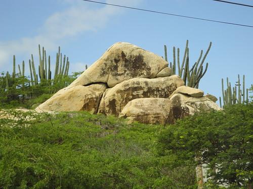 aruba cruising cruise carnivalcruiseline caribbeancruising caribbeansea caribbeanisland dutchcaribbean ayorockformations cactus