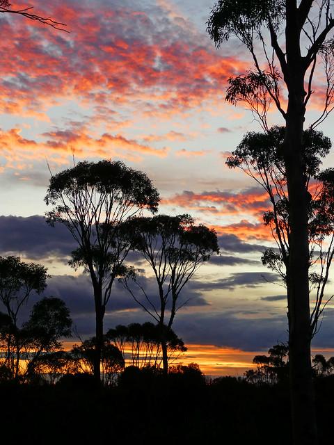 Bald Rock - Western Australia - Sunset