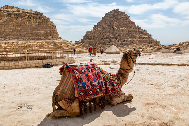 Hanging Out at the Pyramids
