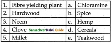 Samacheer Kalvi 6th Science Guide Term 3 Chapter 5 Plants in Daily Life 1