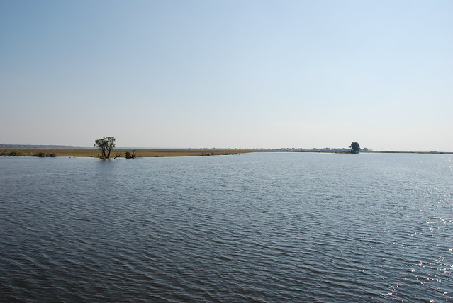 In barca sul Chobe-01
