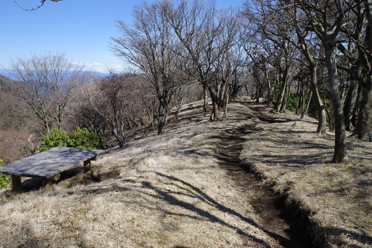 大山から不動尻への登山道