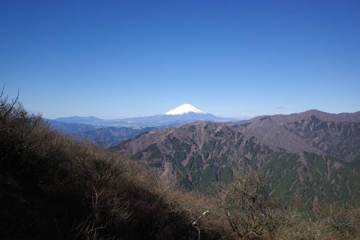 丹沢・大山山頂から眺める富士山