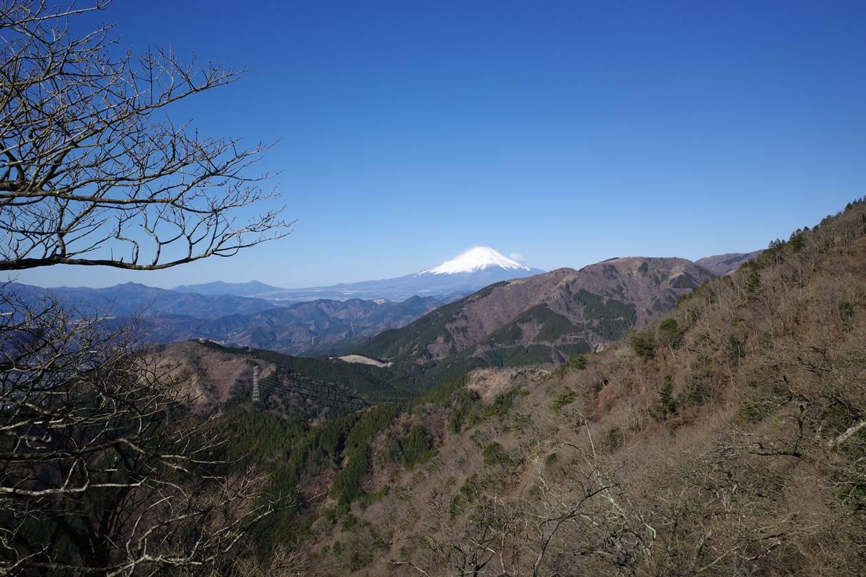 大山・富士見台から眺める富士山