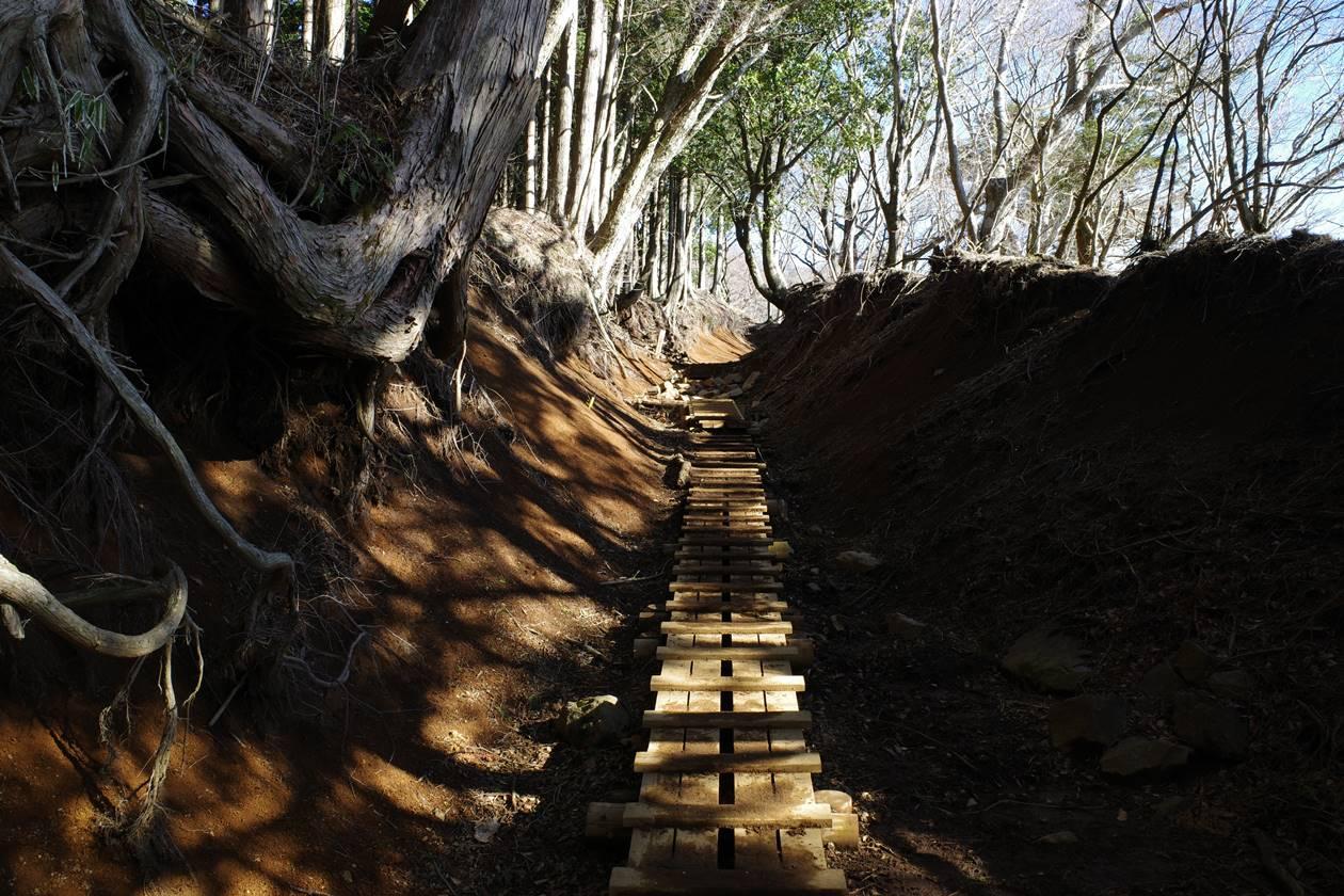 丹沢・大山登山道の木道