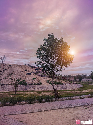 sunsetontrees trees lgv30 sunset colors sky mountains flowers parks faisalabad pakistan kaleemshaheedpark amazing landscape goldenhour adnanafzalmirza meerubstudio lg