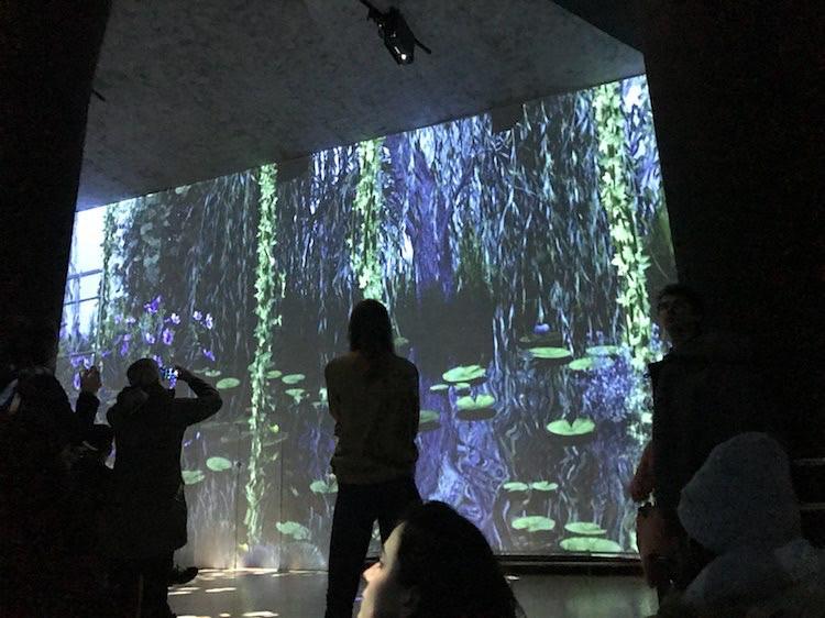 Monet Experience 4