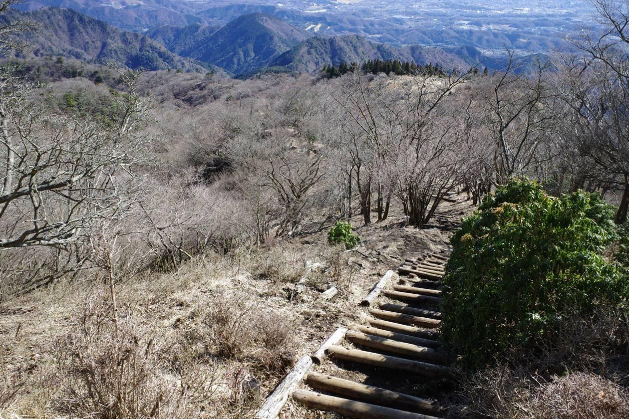 大山~不動尻 日帰り登山