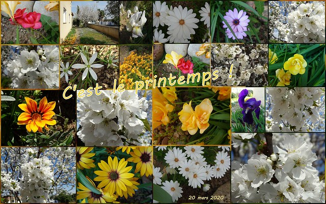 C'est le printemps.......
