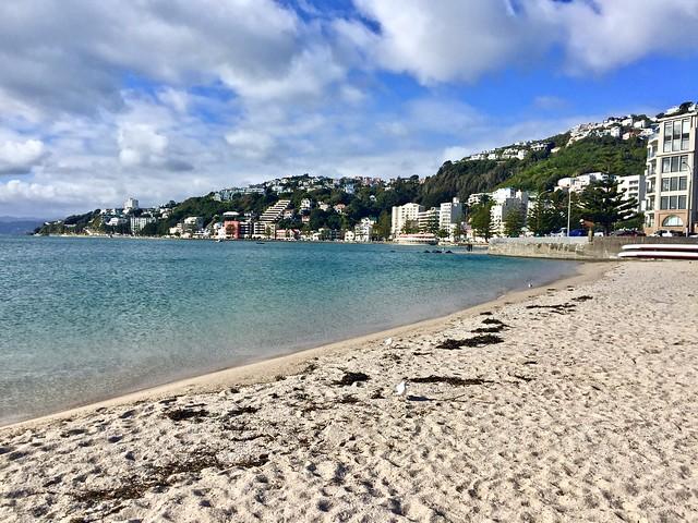 Cosa vedere a Wellington