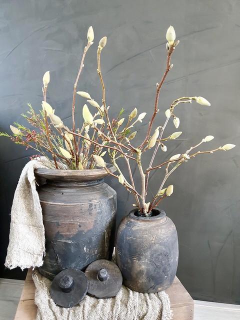 Nepalese potten met voorjaarstakken