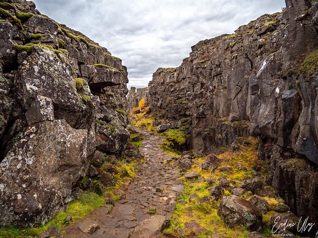 Þingvellir, Iceland    (Explored 20-03-2020)