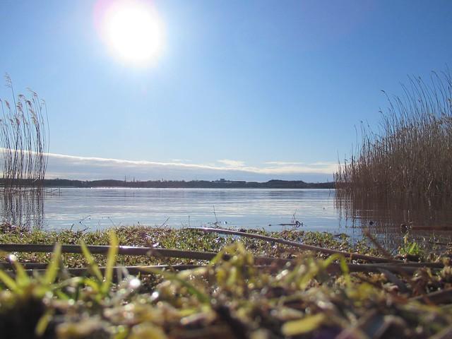 Harku järv märts 2020