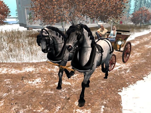 Studland Bay Farm 2020 Revisited - Carriage Ride