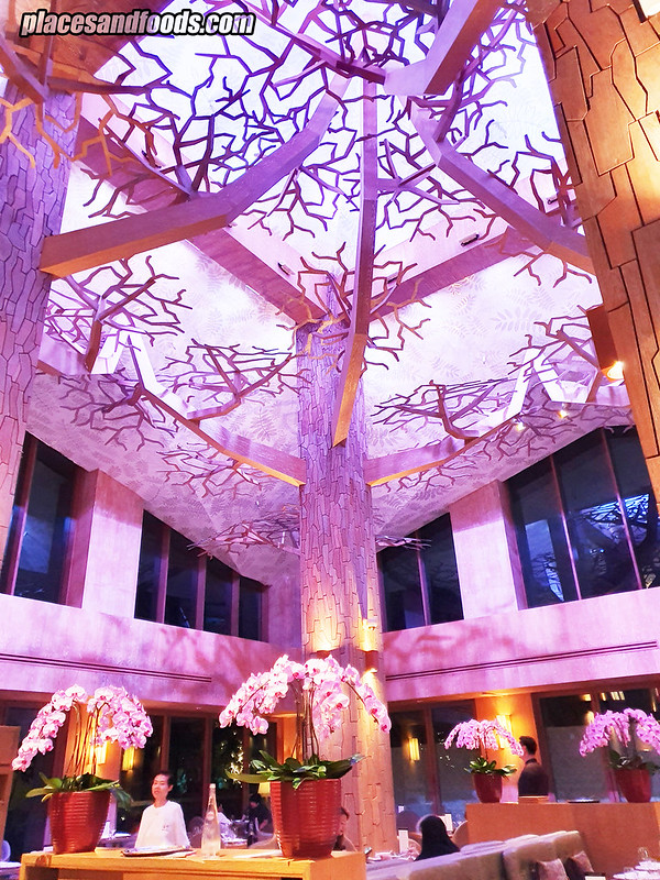 forest Equarius Hotel design