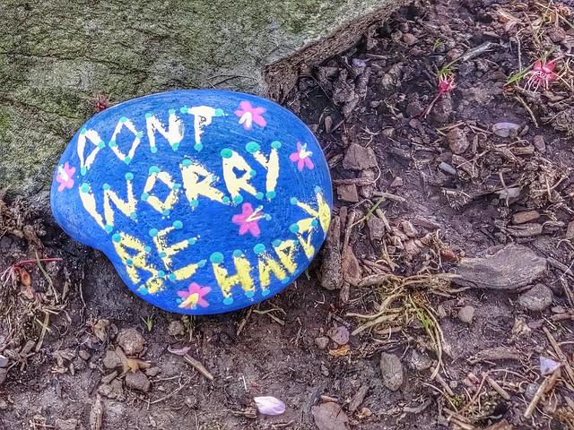 Wisdom on a Rock