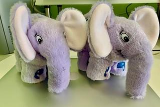Elephpants!