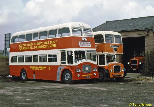 FCD295D & CDL479C National Bus Company NBC Shamrock&Rambler 9295 & 199