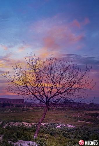 lovelysunset kaleemsaheedpark amazing sky colors pakistan meerubstudio adnanafzalmirza trees mobile lgv30