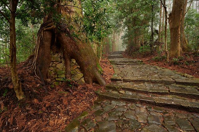 Kumano's old path - 3
