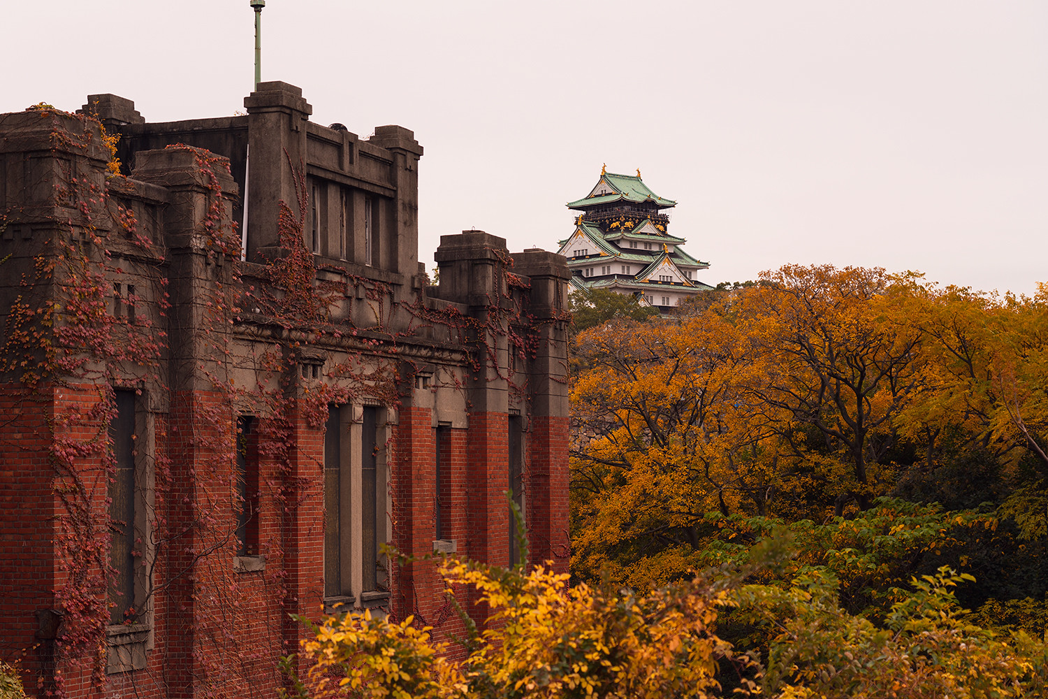 01osaka-castle-japan-fallfoliage-autumn-travel