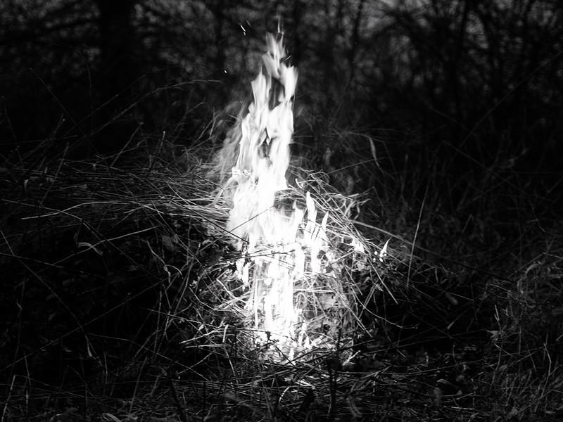 light [1]