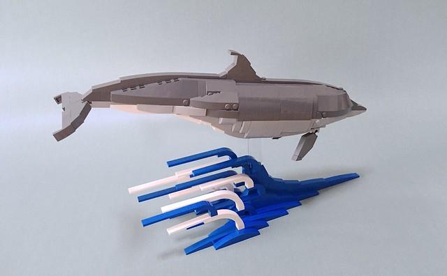 Bottlenose Dolphin 2.0