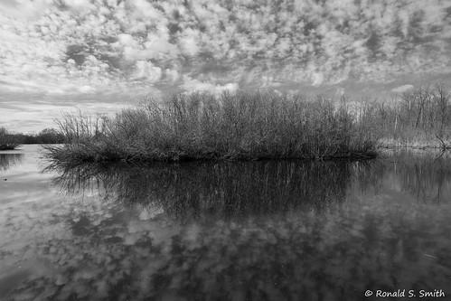 sonya7riii sonyilce7rm3 sony2018 landscape blackandwhite monochrome