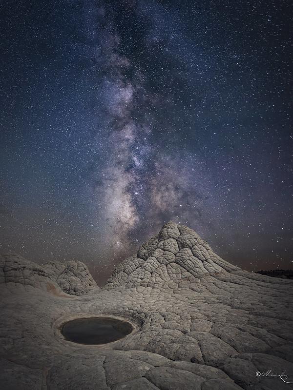 A Night in Alien's Land
