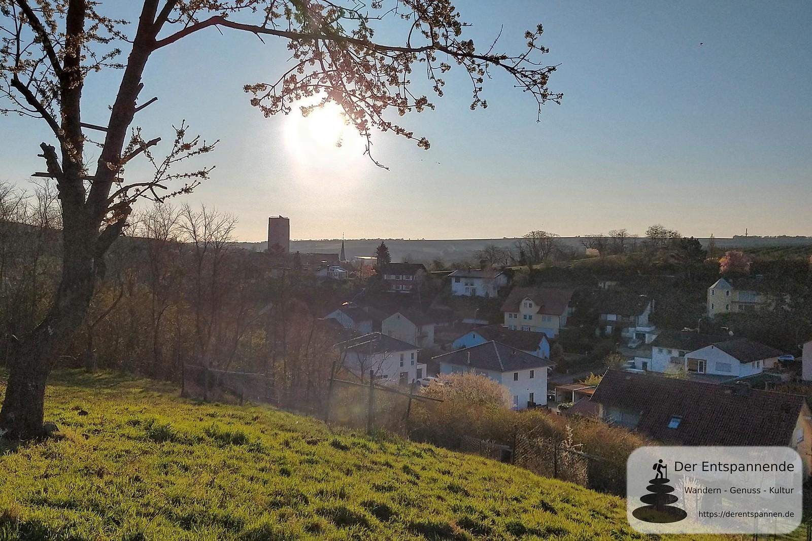Schwabsburg und Bergfried Burgruine Schwabsburg