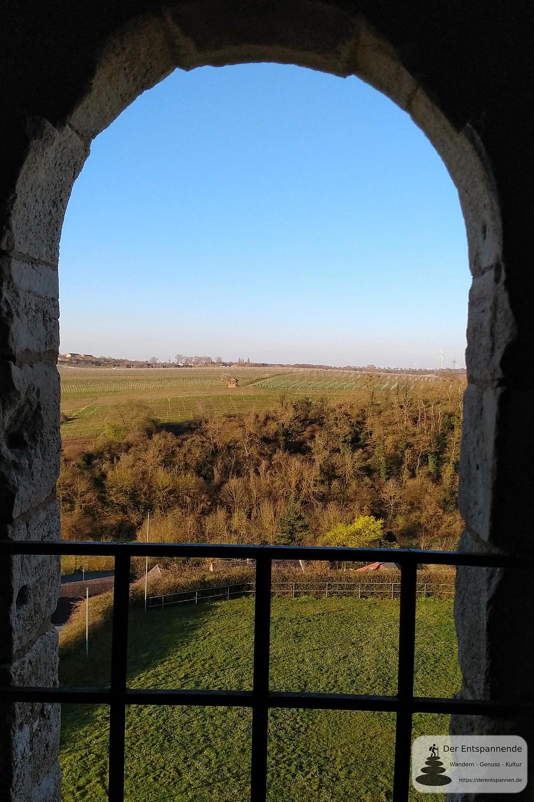 Ausblick vom Bergfried Burgruine Schwabsburg