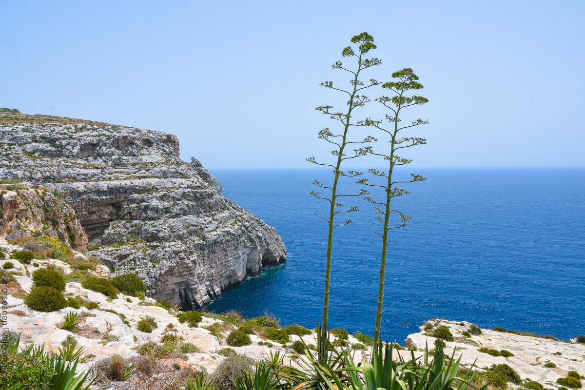 Blue-Grotto-(3)