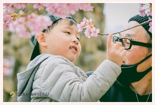 河津桜と男の子