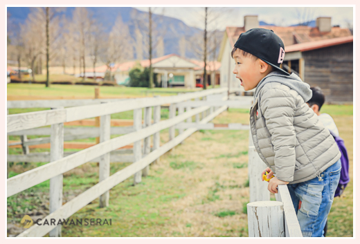 牧場に遊びに来た男の子