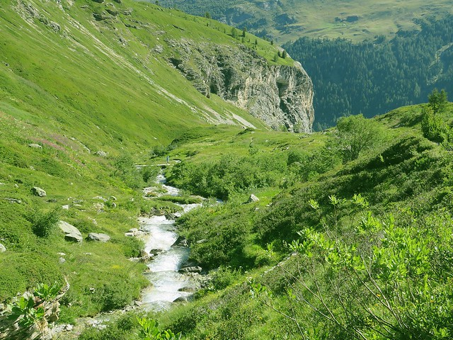 Vallon et Ruisseau de la Sachette.