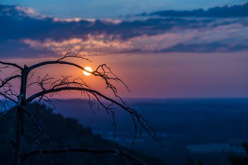 berea indianfortmountain kentucky bluegrass dusk goldenhour sunset