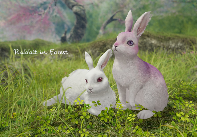HPMD* Rabbit in Forest