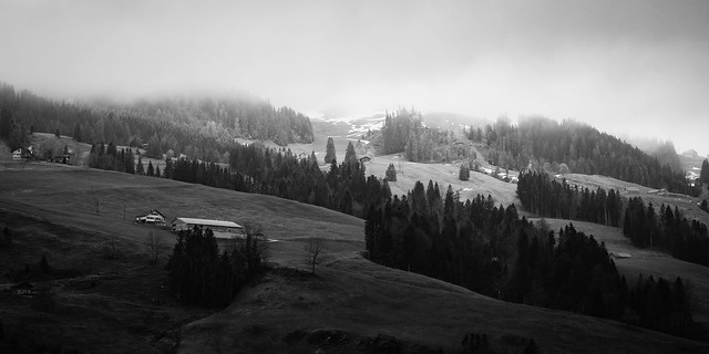 black and white foggy mountain