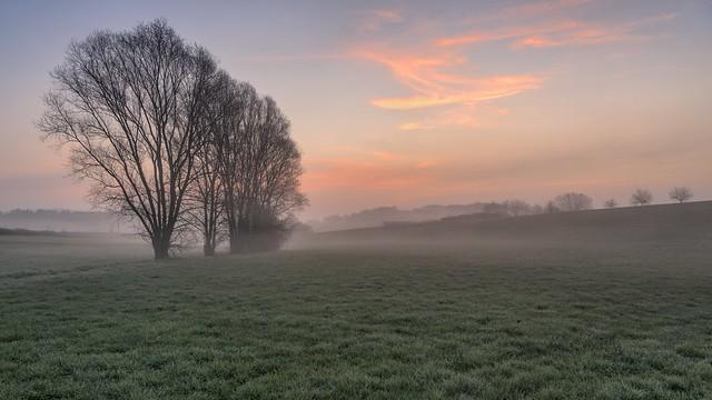 *Poetical March morning II*