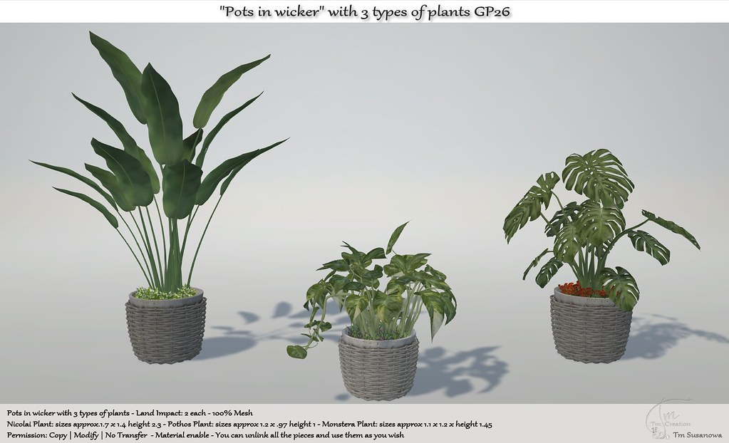 ".:Tm:.Creation ""Pots in wicker"" with 3 types of plants GP26"