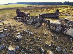 Codger Fort