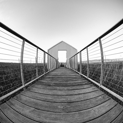 alviso sanjose california usa alvisomarinacountypark siliconvalley sanfranciscobay sanfranciscobayarea southbay baysidepark park marsh marshland pier boardwalk door railing dusk sunset goldenhour outdoor sky clear monochrome blackandwhite sony a6000sony a6000 laowa4mmf28 laowa4mmf28fisheye circularfisheye fisheye wideangle wideanglelens fisheyelens 3xp raw photomatix hdr qualityhdr qualityhdrphotography symmetry onepointperspective perspective fav100