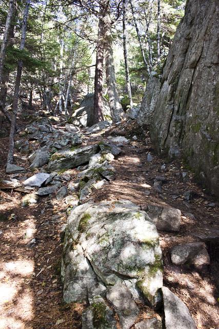 Yakutania Point Trails
