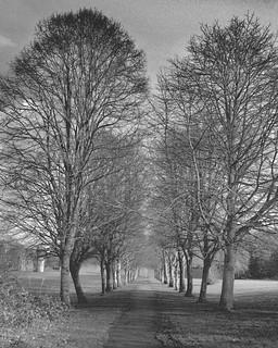 The quiet path (explored)