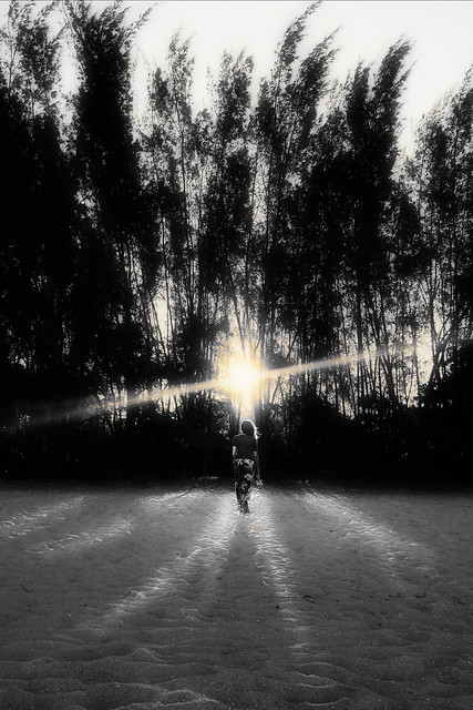 Segui sempre la luce