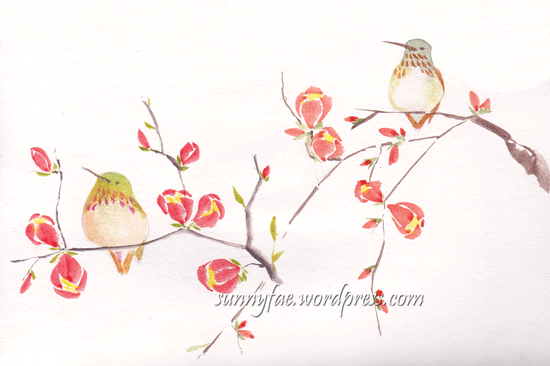 2 hummingbird sketches on quince blossom