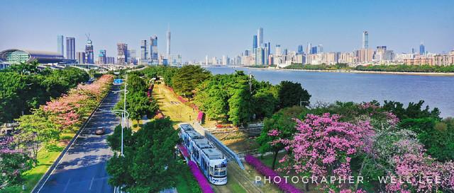 Canton(Guangzhou)