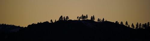 trees pinetrees peavinemtpeak ridgeline reno verdi washoecounty nevada donbachman marshalartsofchilcoot narodniemstiteli mountain peak winter sunset