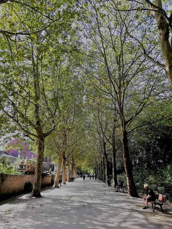 Sint-Donatus Park (1)