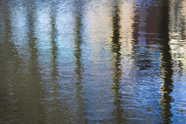 Reflections on the Biltse Grift